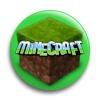 Значок - 119 Minecraft